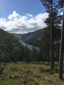 View from Glendalough Red Route hiking trail, Wicklow, Ireland