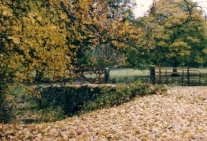 castle-leslie-autumn